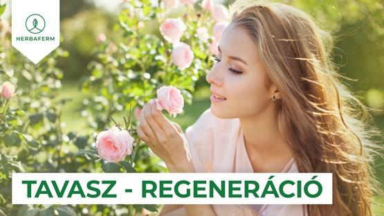 Tavasz – regeneráció